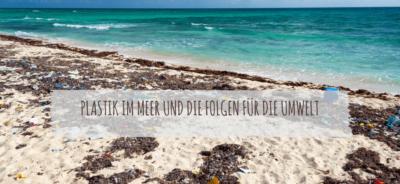 Plastik im Meer und die Folgen für die Umwelt
