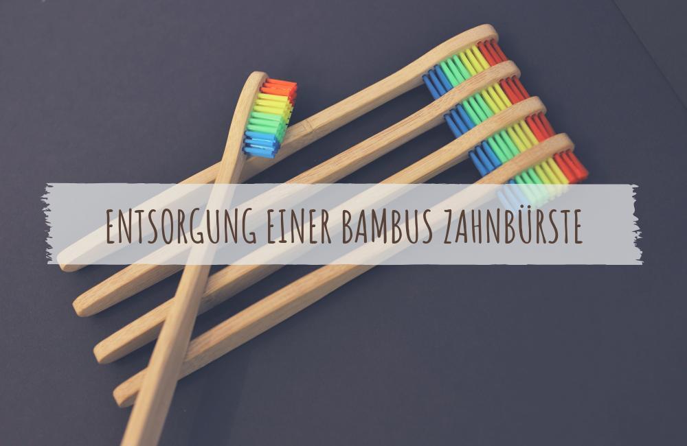 Entsorgung einer Bambus Zahnbürste ecomonkey