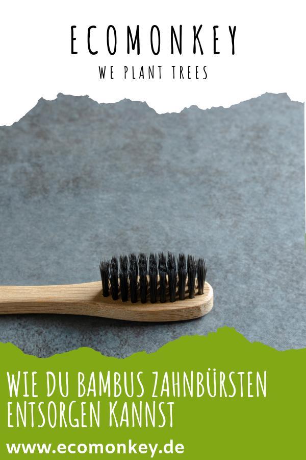 entsorgung von bambus zahnbürsten