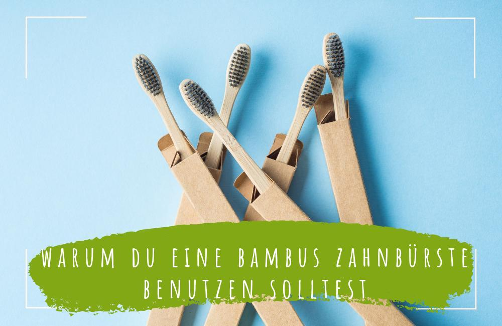 warum du eine bambus zahnbürste benutzen solltest - ECOMONKEY (1)