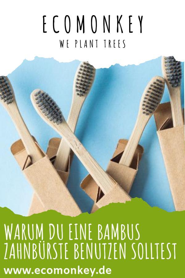 warum du eine bambus zahnbürste benutzen solltest - ECOMONKEY