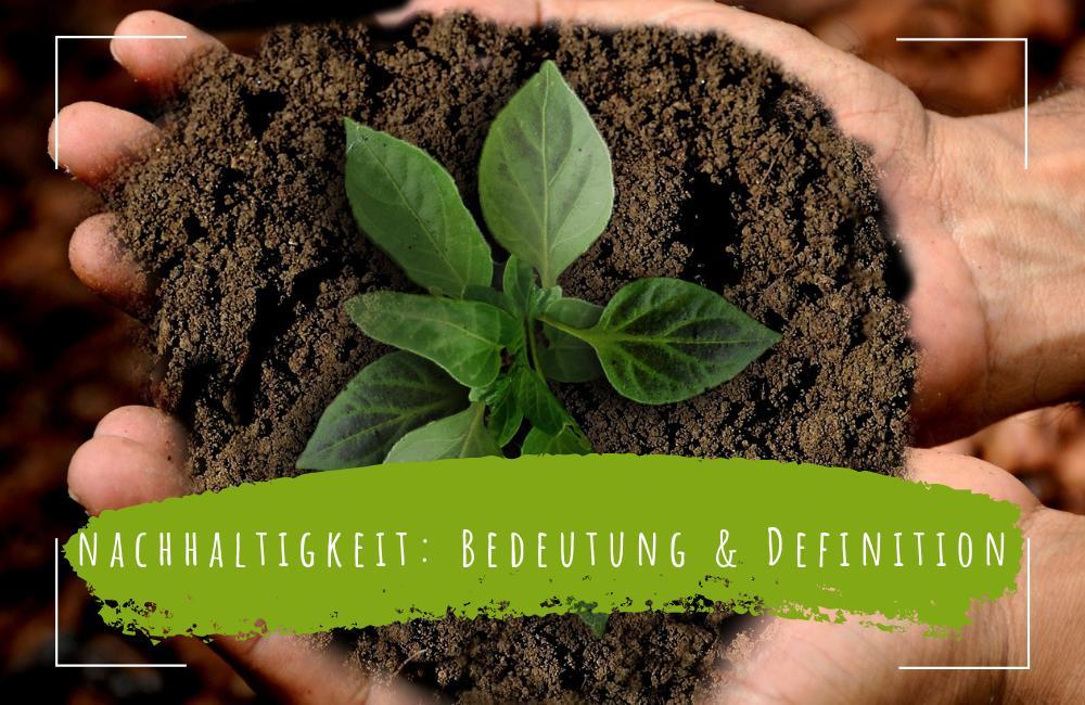 Nachhaltigkeit-im-Alltag-Bedeutung-Definition-Erklärung-und-Beispiele
