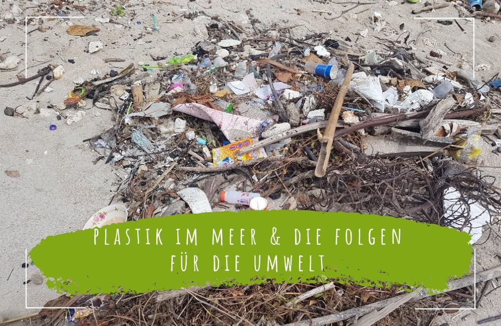 Plastik-im-Meer-und-die-Folgen-für-die-Umwelt