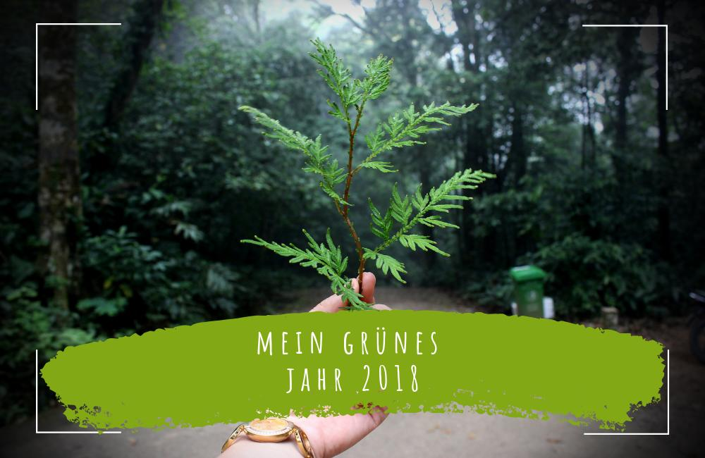 mein-grünes-jahr-2018