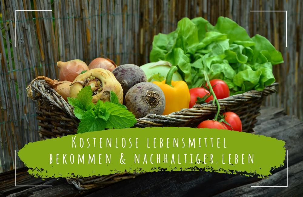kostenlose lebensmittel bekommen und nachhaltiger leben