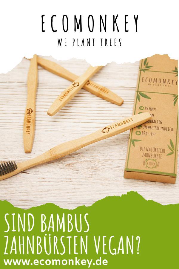 sind bambus zahnbürsten vegan_