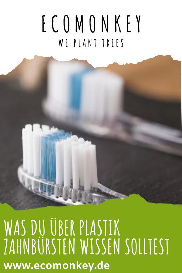 Was du über Plastik Zahnbürsten wissen solltest - ECOMONKEY