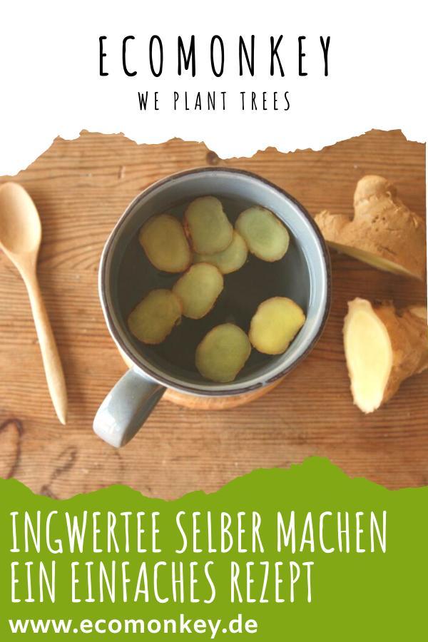 Ingwertee selber machen rezept pinterest